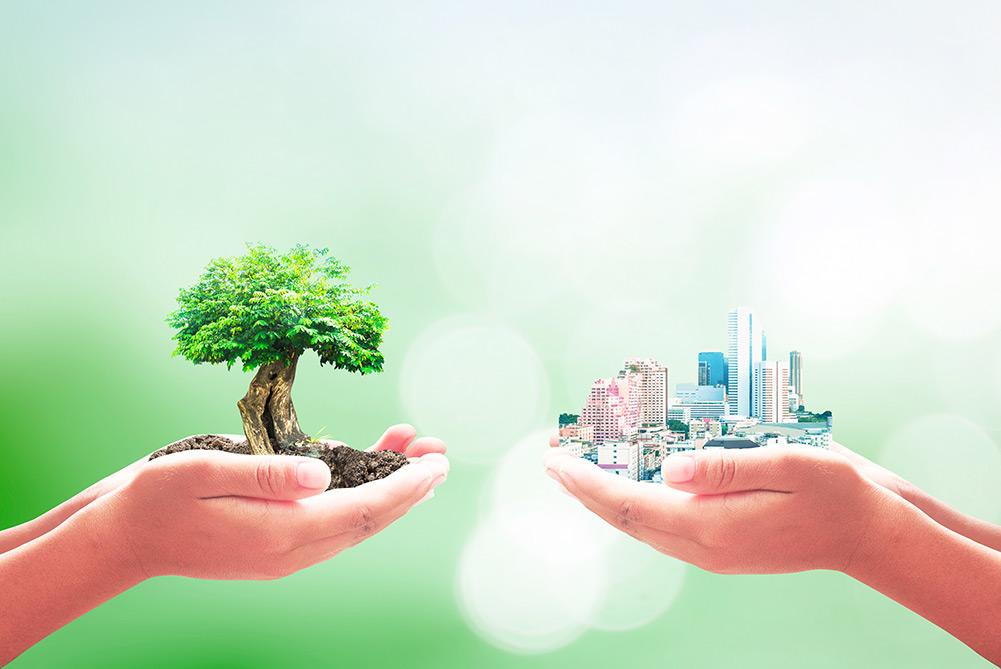 Klimaschutz in der Immobilienbranche